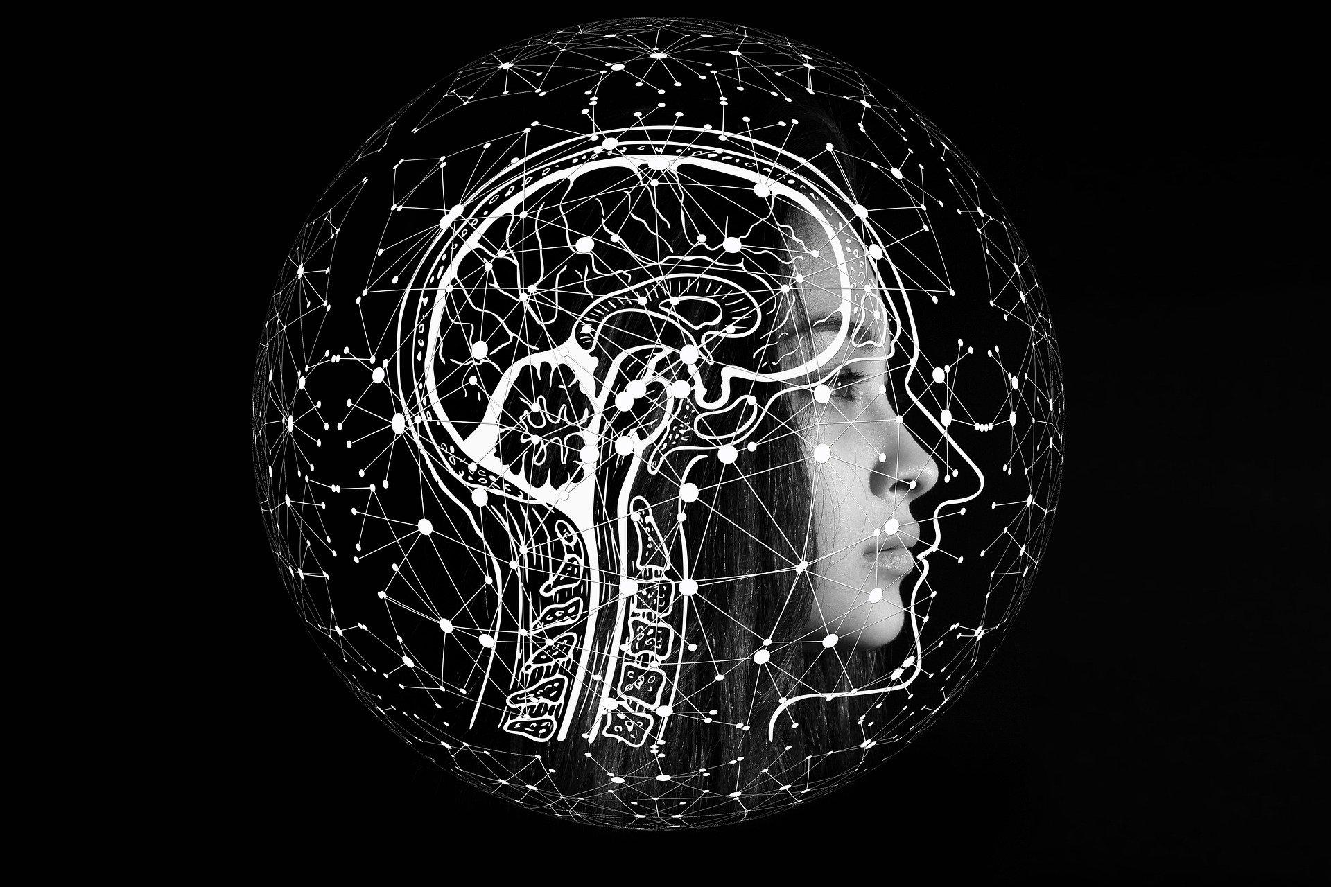 O que a neurociência diz sobre a meditação?